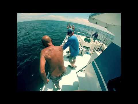 Deep Sea Fishing At Gulf Shores