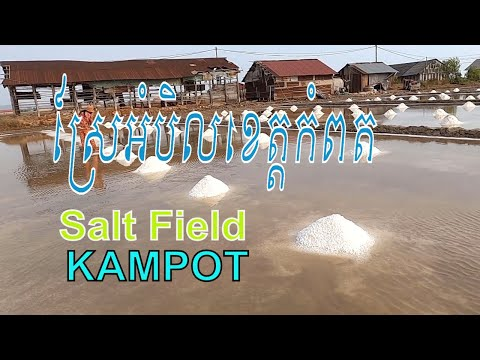 Salt Field At Kampot Province/សូមទស្សនាការធ្វេីស្រែអំបិលខេត្តកំពត.