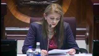 Sesión 419 del Pleno (08-11-2016)