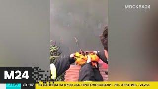 Столичные пожарные спасли выводок утят из котлована - Москва 24