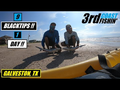 9 BLACKTIP SHARKS!! | SURF FISHING GALVESTON, TX 2019 | (ROLLOVER PASS)