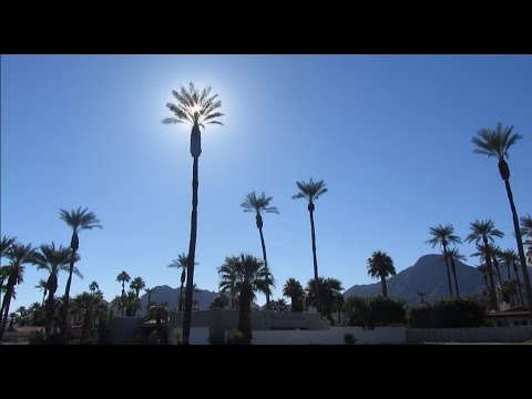 My Life In Palm Springs (2013) - Part 1