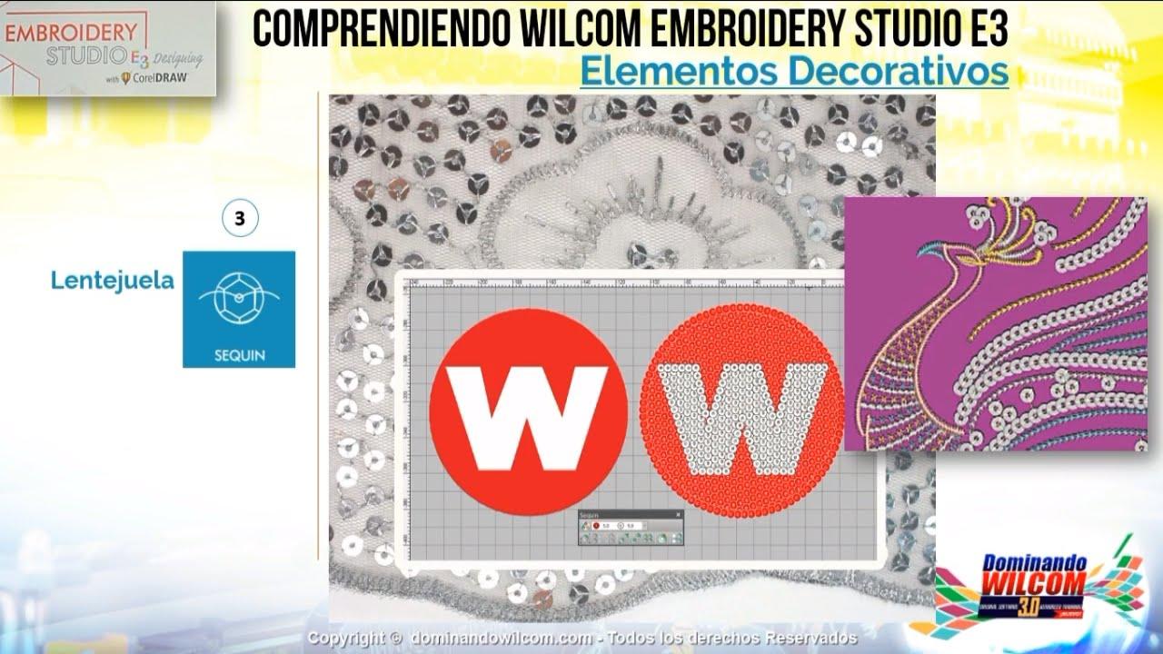 Explicación Completa Wilcom EmbroideryStudio e3, Original