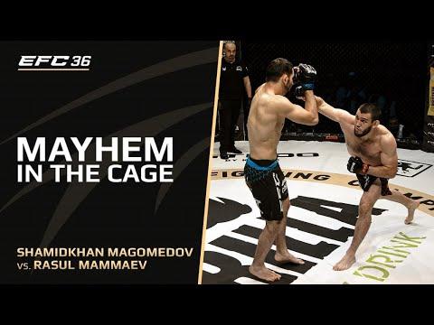 Расул Маммаев vs Шамидхан Магомедов | EAGLE FC 36