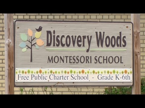 Discovery Woods School in Brainerd Going Back to Distance Learning