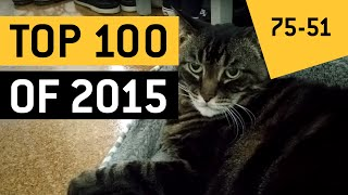 Top 100 Viral Videos of the Year 2015    JukinVideo (Part 2)