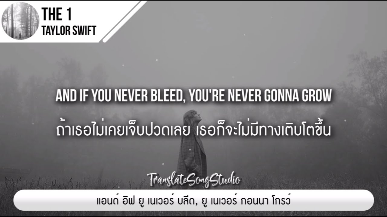 Download แปลเพลง the 1 - Taylor Swift