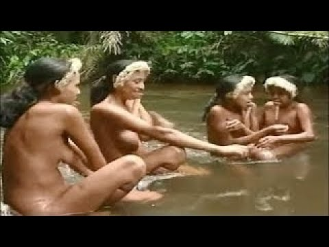 Tribes Documentary Tribes In South America: Zoé People Near Amazon River, Brazil