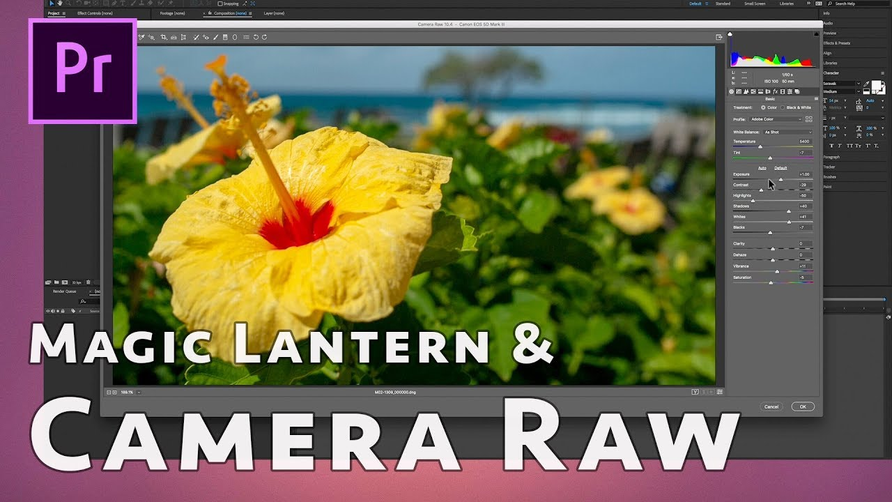 Magic Lantern Raw Workflow: Canon 5D