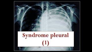 le syndrome pleural [partie 1]