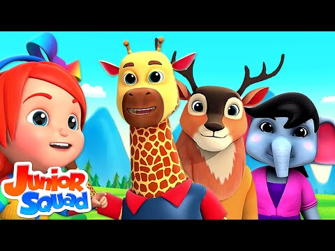Zoo Song For