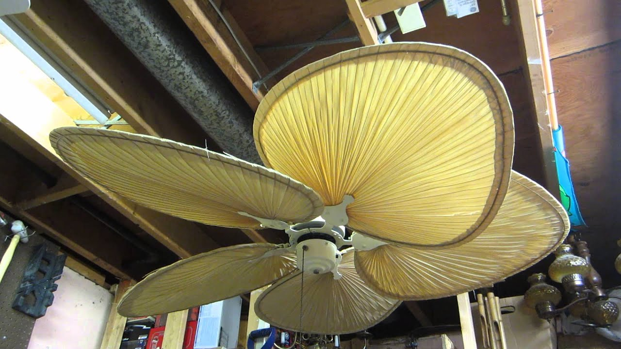 Fanimation islander 52 ceiling fan youtube fanimation islander 52 ceiling fan aloadofball Gallery