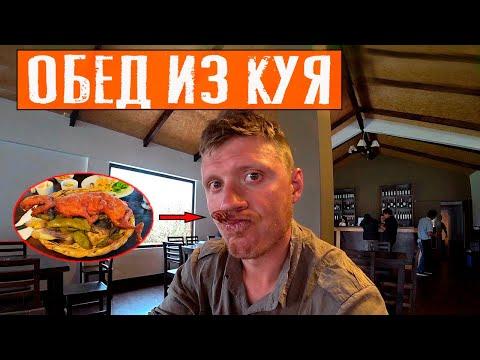Перуанская кухня: Блюдо из куя | В гостях у мэра | Путешествие по Перу | #10