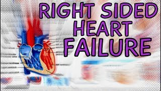 Right Sided Heart Failure - Explained in 2 Minutes  (Right Ventricle Failure)