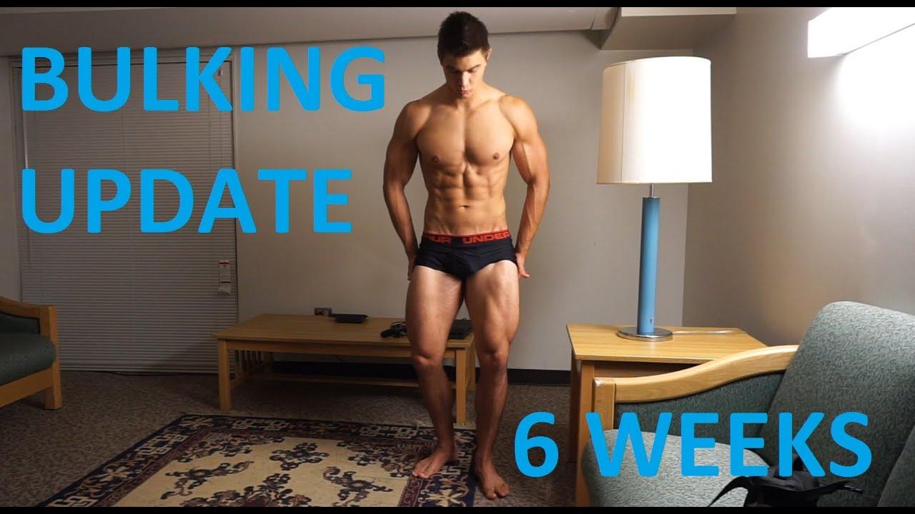 bbw bulk september physique update - youtube