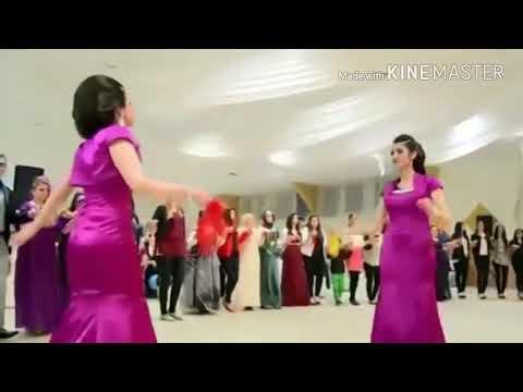 رقص کوردی باآهنگ آبشاری  هراتی😍😍😁😂 thumbnail