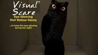 Owl Statue Decoy With Glowing Eyes By Visualscare