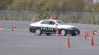 パトカーの訓練 thumbnail