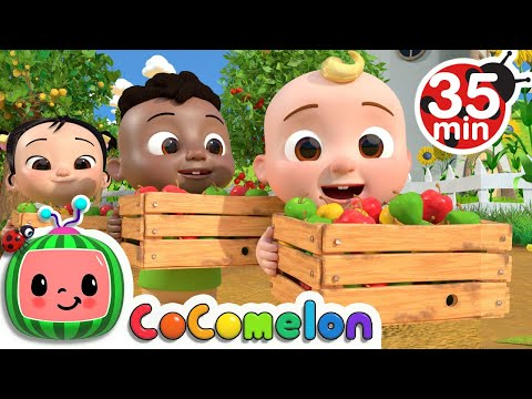 Learn to Count with Apples + More Nursery Rhymes & Kids Songs - CoComelon