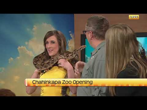 NDT Chahinkapa Zoo opening