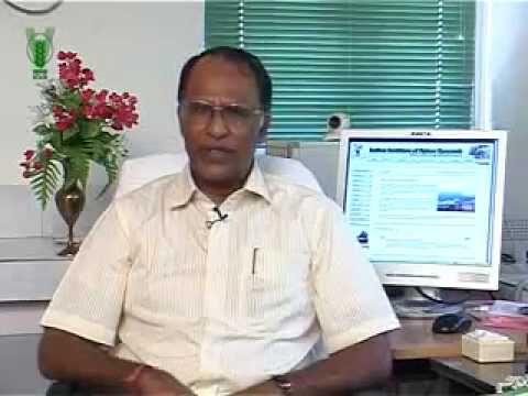 PRATHIBHA TURMERIC: A SUCCESS STORY - Malayalam.flv