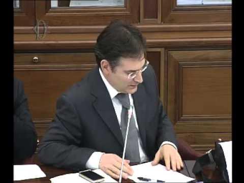 Roma - Audizione Boston Consulting Group (09.01.14)
