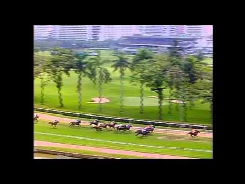 ม้าแข่งสนามฝรั่ง เที่ยว 2 ชั้น 3 อา.26เมษา58