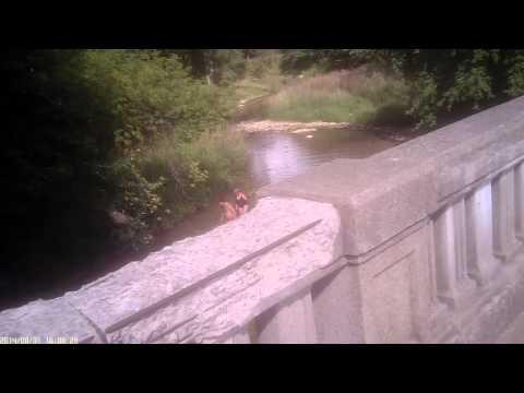 Kayak trespassers Port Austin Michigan (#64)