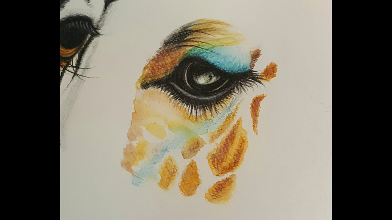 Drawing a giraffe eye with Watercolor pencils  How to draw
