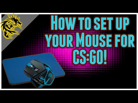 How to set up your Mouse for CS:GO - Mousepad, settings, and sens talk!