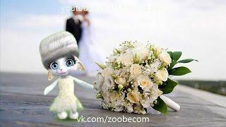 Zoobe Зайка Свадьба!