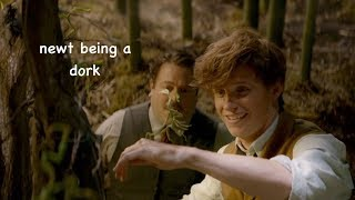 newt scamander being a dork for 3 minutes straight