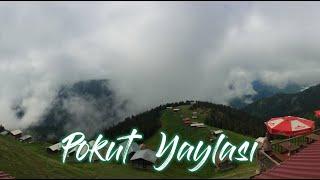 Pokut Yaylası - Doğa Konukevi