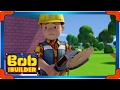 Bob the Builder: Cats and Dogs | Cartoons for Kids