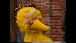 Sesame Street - Big Bird