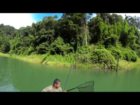 Volga Lures - Hacker Jr.  fishing in Thailand part 2 - 2014