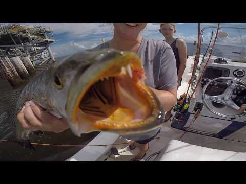 Mobile Bay Speckled Trout Fishing