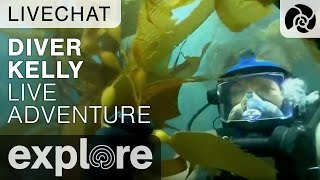Channel Islands Live Adventures with Diver Kelly - Underwater Live Chat thumbnail