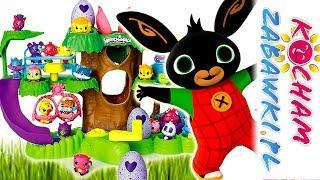 Bing & Hatchimals • Wylęgarnia jajek • Niespodzianka dla Koko • bajki po polsku