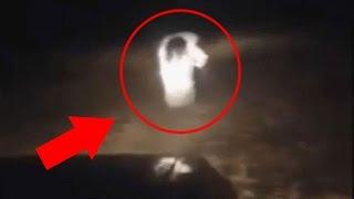 বাস্তবে দেখা ও ক্যামেরায় ধরা পড়া সবচেয়ে রহস্যময় ৫টি জন্তু !! 5 Mysterious Creatures Caught On Camera
