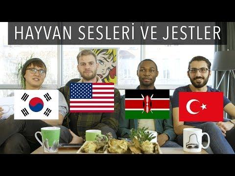 4 ÜLKEDE KÖPEKLER FARKLI MI HAVLIYOR? | 3 Yabancı 1 Türk #5