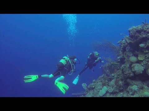 US, Cuban scientists partnering to protect marine reserves