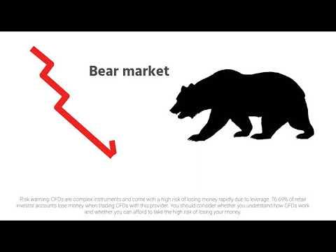 CapitalPanda | CapitalPanda | Bull&Bear Market (Glossary Of Terms)