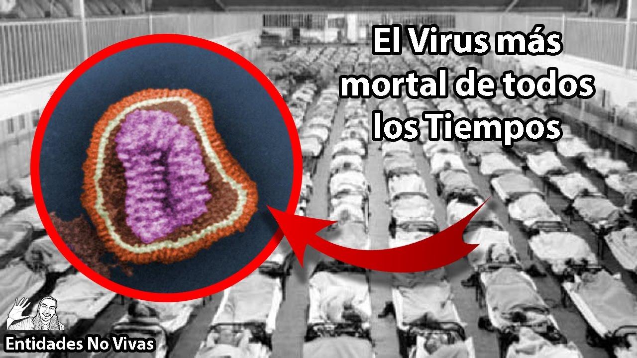 ¿Cuál es el Virus mas Peligroso?