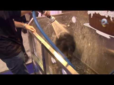 Self Serve Dog Wash Demonstration - Evolution Dog Wash