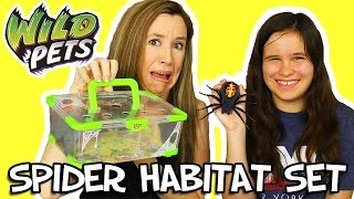 Wild Pets Spider Habitat Review