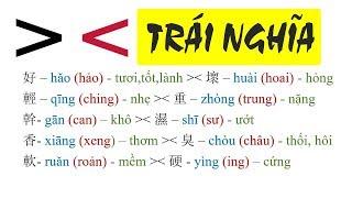 Baixar Cặp từ TRÁI NGHĨA trong tiếng Trung