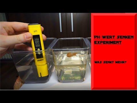 PH-WERT SENKEN/ EXPERIMENT