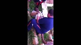 Homem enterrado vivo em Ferraz de Vasconcelos
