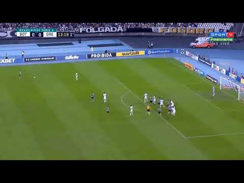 Botafogo 0 x 1 Grêmio - Melhores Momentos e Gols | Brasileirão 2019 12/06/2019